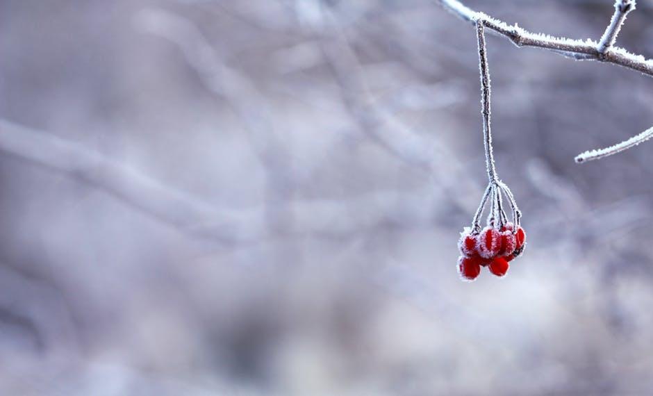 Évszakelmélet 4. rész – a Tél típus tulajdonságai és előnyös színei