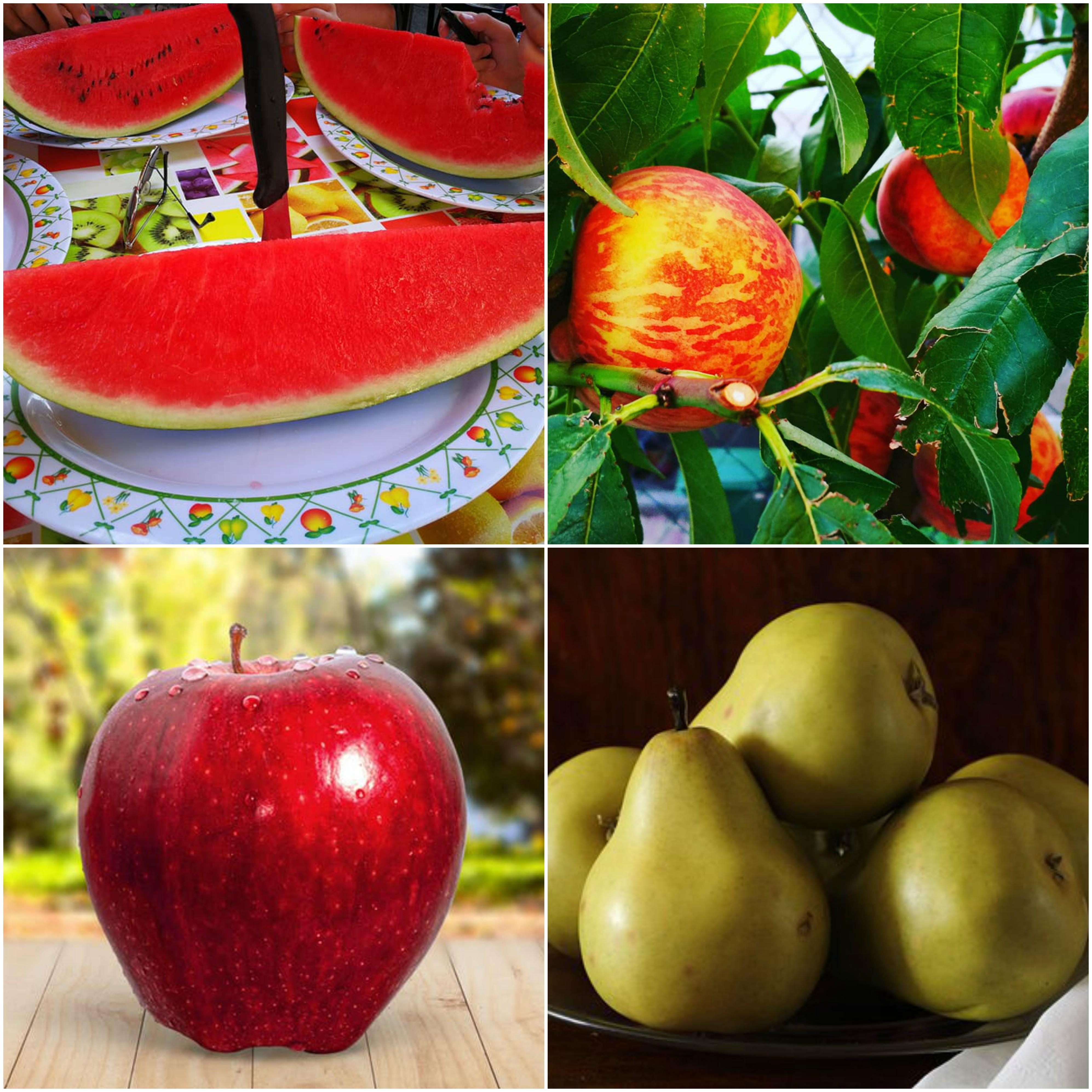 Melyik szebb? Az alma vagy a körte?